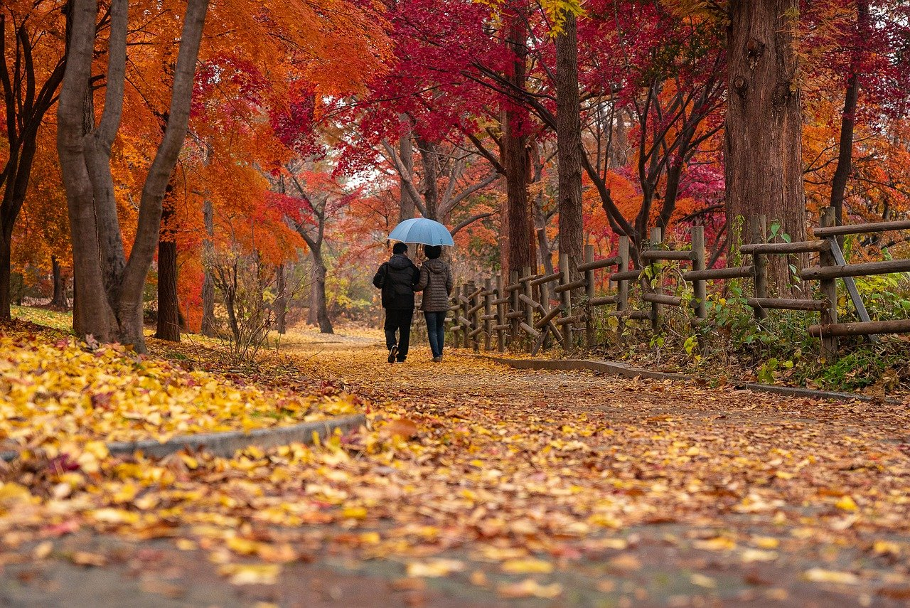 couple, park, autumn