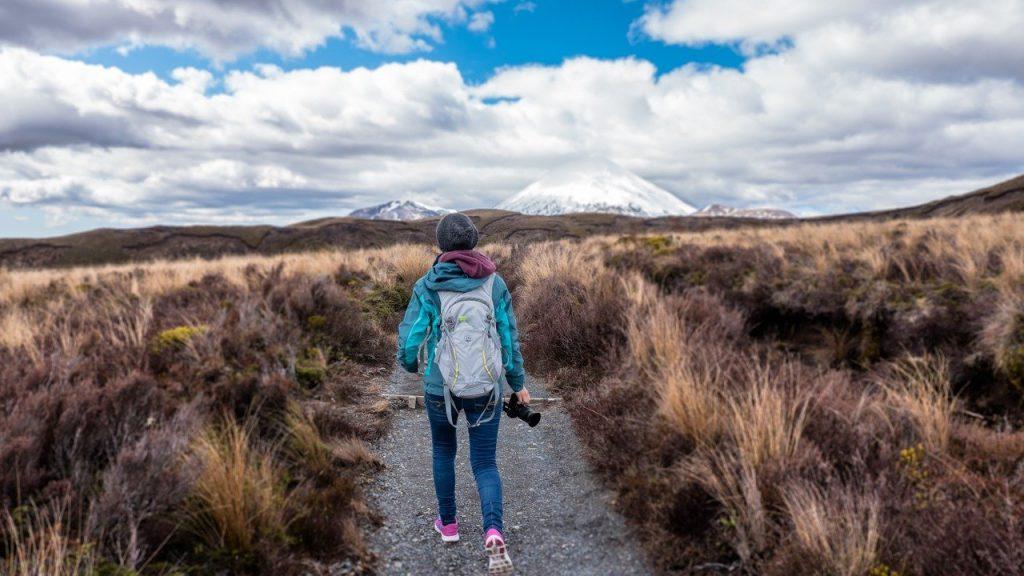 hiking, trail, hike